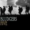Bludgers